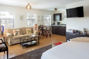 Room-14-Living-Area-498x232